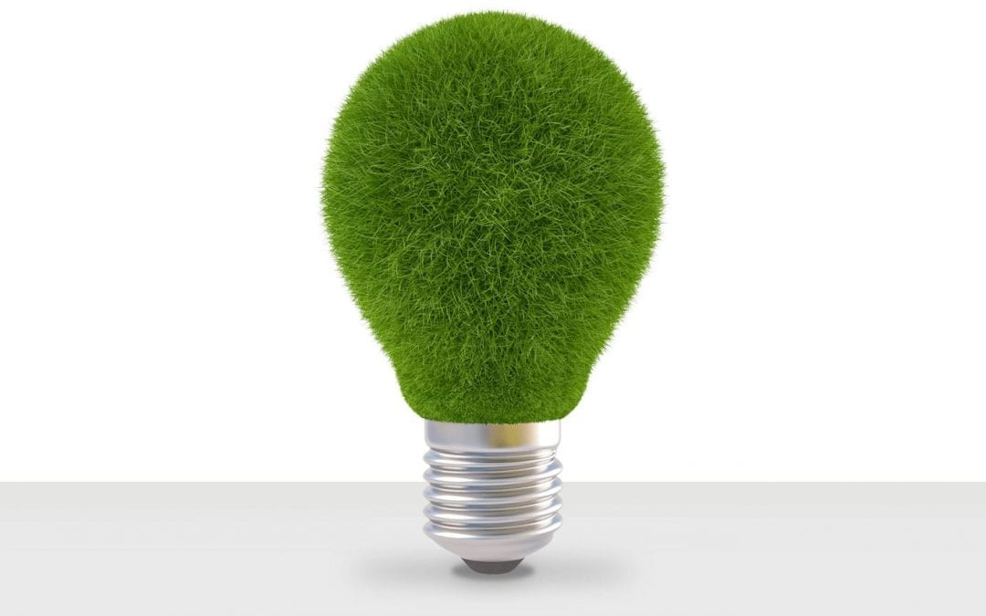 Energywise – A Case Study